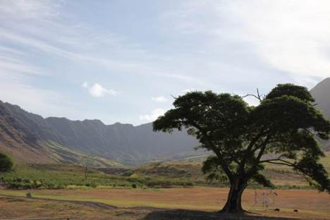 The first presentation in the new Huliko'a Kaiāulu scholar speaker series examines the community's relationship with Makua Valley in Wai'anae.