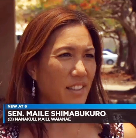 "Mendoza: ""The most controversial idea involves using cameras to catch speeders and red light runners. 'I think it really would create a much higher sense of security. And I think a lot of people would think twice before they speed though these lights and break the law,' said state Sen. Maile Shimabukuro, whose district includes Waianae and Nanakuli. She said she'll talk to the state about the cameras."""
